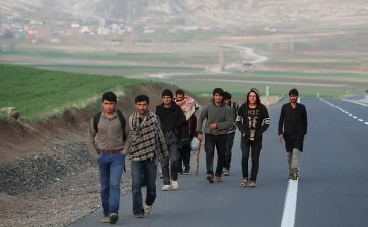 اروپایي ټولنه: افغانان جګړو وځپل؛ مرسته ورسره کوو