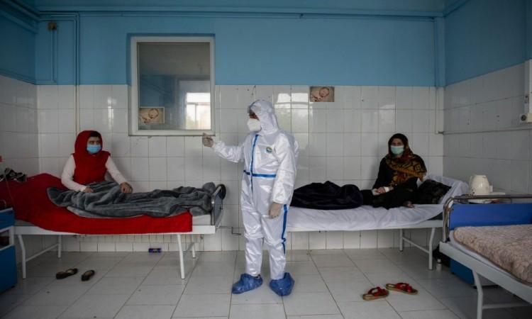 د کرونا ویروس د ۱۷۰ تازو پیښو ثبتیدل
