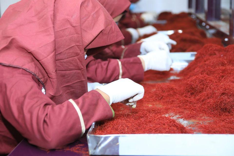 د سیمي هیوادونو ته د هرات د زعفرانو صادرات زیات شوي دي