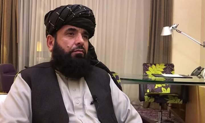 سهیل شاهین: کابل کې د پردیو په خوښه امن سیمې نه غواړو